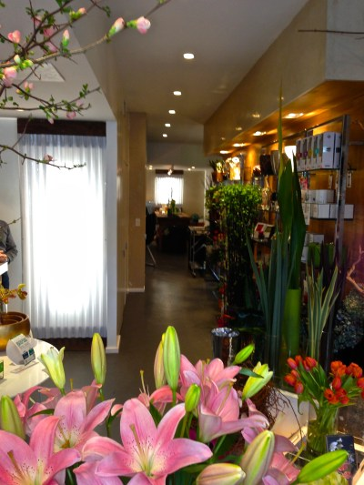 Harlem Flo   a flower boutique in Harlem