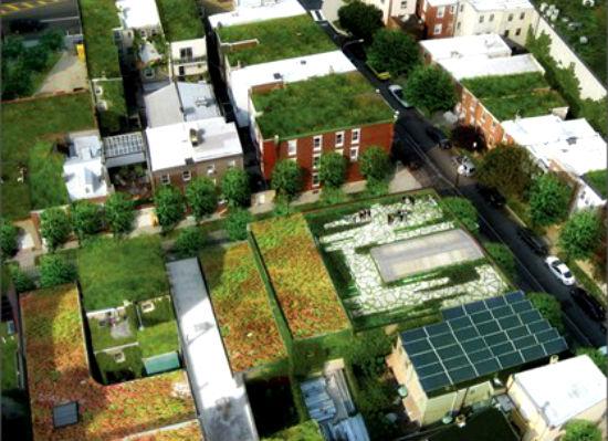 Greening Harlem1