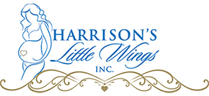 Harrisons Little Wings