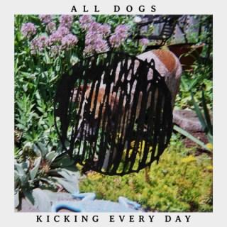 alldogs-kicking-skin-560x560[1]