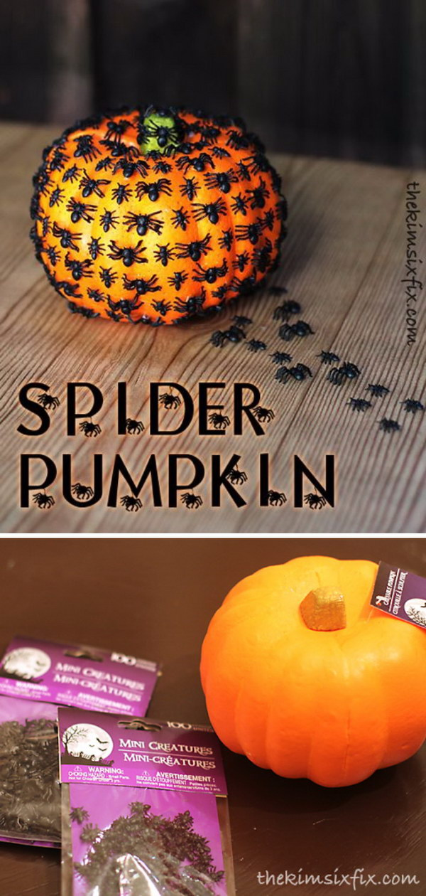 40  Cool No Carve Pumpkin Decorating Ideas   Hative DIY Creepy Crawly Spider Pumpkin
