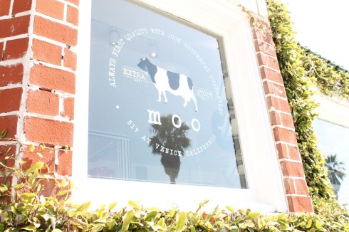 Moo Venice Window