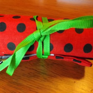 Monster/Red Polka Dot Crayon Roll Up