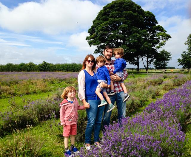 Sunny Days & Lavender Fields