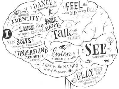 brain-functions