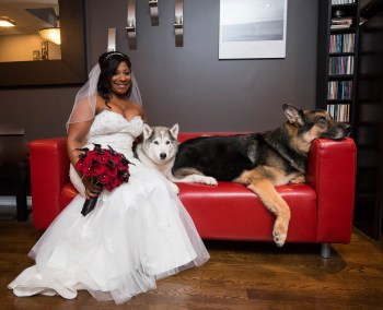 Bride holding dark red bouquet with dark leaves with her two dogs