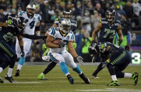 jonathan-stewart-nfl-divisional-round-carolina-panthers-seattle-seahawks