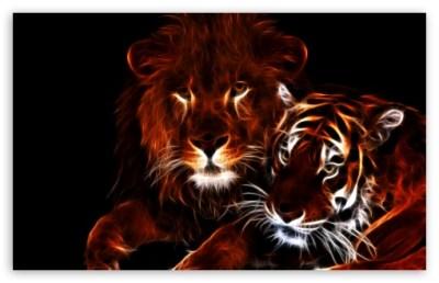 Glowing Lion and Tiger 4K HD Desktop Wallpaper for 4K Ultra HD TV • Tablet • Smartphone • Mobile ...