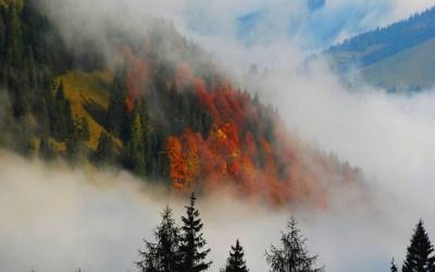 foggy landscape wallpaper - HD Desktop Wallpapers | 4k HD