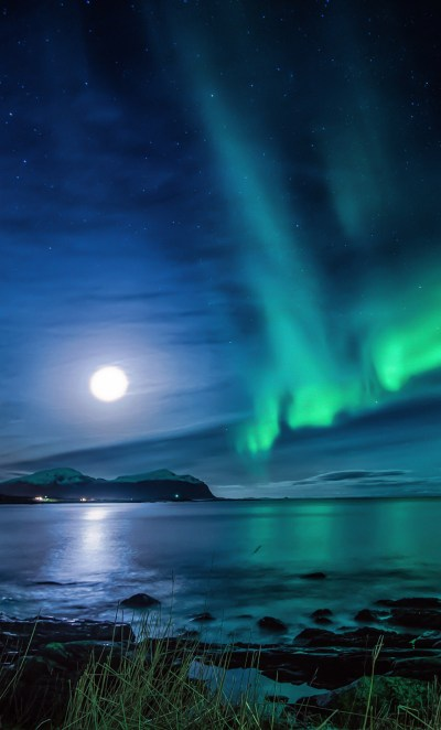 1280x2120 Aurora Borealis Moon Night iPhone 6+ HD 4k Wallpapers, Images, Backgrounds, Photos and ...