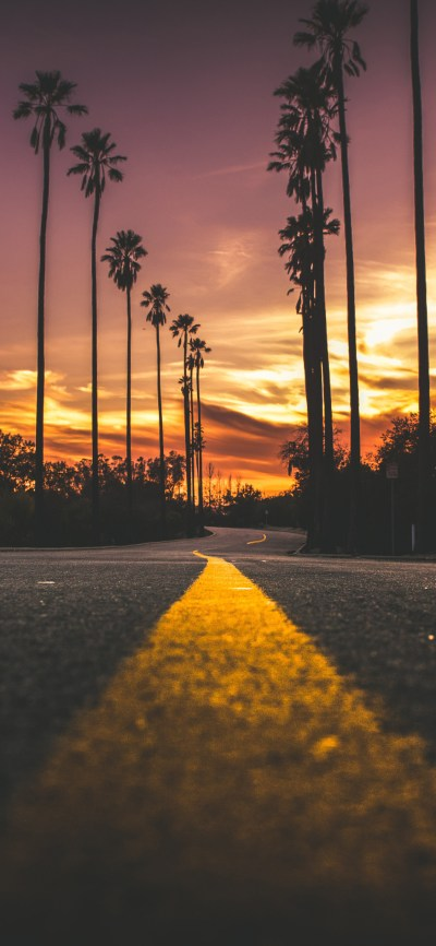 1125x2436 Road In City During Sunset Iphone XS,Iphone 10,Iphone X HD 4k Wallpapers, Images ...