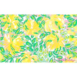 Small Crop Of Lilly Pulitzer Patterns