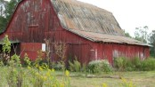 the-old-red-barn