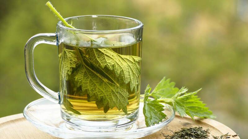 Как заварить чай с крапивой