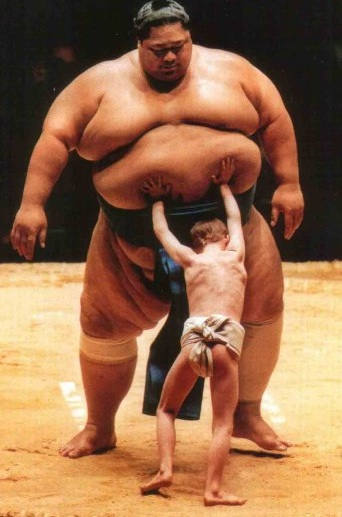 sumo kid Fit and Fat?