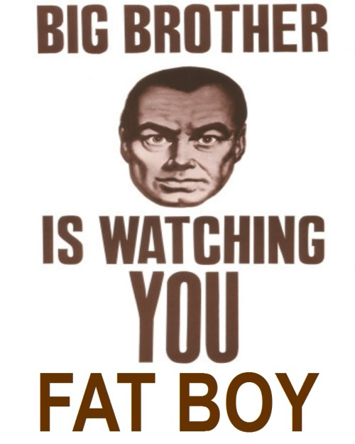 big brother obesity Big Brother v.s. Childhood Obesity
