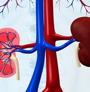 kidney-disease-quiz-promo