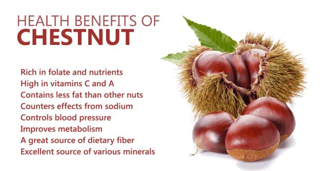 chestnut_benefits