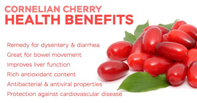 cornelian cherry health benefits