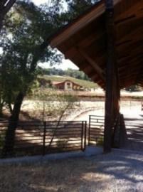Just a peak at this beautiful 2000 acre vineyard