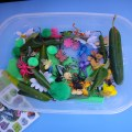 "Bugs Sensory Tub and ""Bugs"", Mini-Encyclopedia"