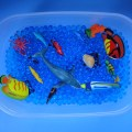 Water Beads: Project Ocean