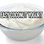 easy homemade vegan coconut yogurt
