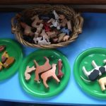 Animal types and habitats for preschool