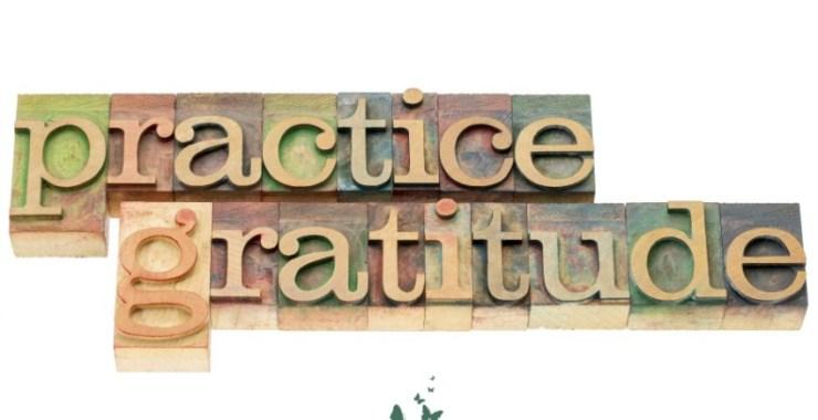 Inspiration Found Everywhere:  Practicing Gratitude