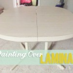 Painting Over Laminate