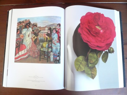 Photo of a rose hat from the book Balenciaga and Spain