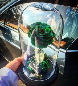 Forever Rose: rože, ki trajajo večno