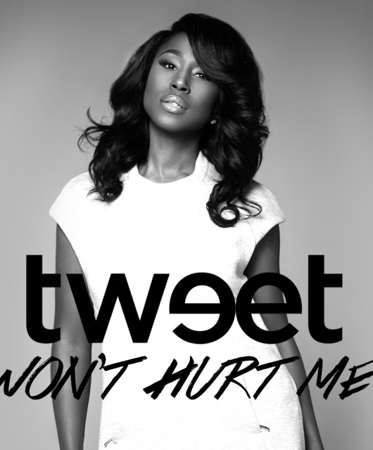 Tweet-Won't Hurt Me-single_cover_art