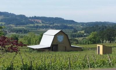 Bergstrom Wines tasting room views willamette valley