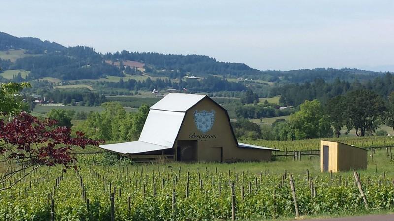 Wine Tasting: More Willamette Valley Vineyard Recommendations