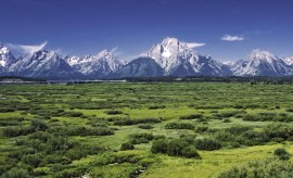 Willow_Flats_area_and_Teton_Range_in_Grand_Teton_National_Park courtesy of Wikimedia