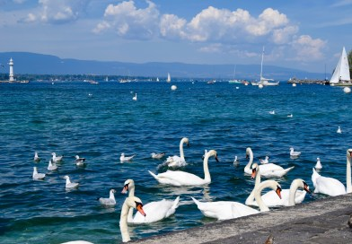 Can You Travel Geneva On A Backpacker Budget?