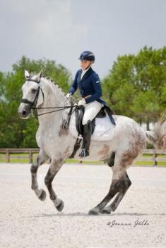 Lionwood Kinsale Lad and Heidi Degele competed at the Gold Coast Dressage Association competition. In the Intermediare 1 Freestyle they Scored 71.13 percent and 69.25 percent.  (Photo: Joanna Jodko)
