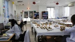 H κυπριακή κυβέρνηση εντείνει τις προσπάθειές της για να συνεργαστεί η Τουρκία στο θέμα των αγνοουμένων. Φωτογραφία ΚΥΠΕ.