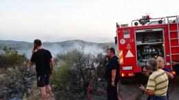 Εξαιρετικά δύσκολη χαρακτηρίζεται από στελέχη της Πυροσβεστικής η κατάσταση με τη μεγάλη δασική πυρκαγιά που καίει από νωρίς το απόγευμα σε δασική έκταση και ελαιώνες μεταξύ Γέρας και Πλωμαρίου. ΑΠΕ-ΜΠΕ /ΑΠΕ-ΜΠΕ/ΜΠΟΥΓΙΩΤΗΣ ΕΥΑΓΓΕΛΟΣ