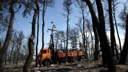 Πυροσβέστες επιχειρούν στην κατάσβεση της πυρκαγιάς που μαίνεται σε δασική έκταση κοντά στον Βαρνάβα.  ΑΠΕ-ΜΠΕ, ΣΥΜΕΛΑ ΠΑΝΤΖΑΡΤΖΗ
