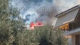 Σύμφωνα με το lamiareport.gr, απ' όπου και η φωτογραφία, η πυρκαγιά ξεκίνησε πάνω από την Εθνική Οδό Λαμίας - Αθηνών, κοντά στα σπίτια και καίει πευκοδάσος πριν την Καρυά Καμένων Βούρλων.