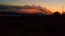 Φωτιά που εκδηλώθηκε στην περιοχή Κρυονέρι της Αμαλιάδας. ΑΠΕ-ΜΠΕ/ΜΠΟΥΓΙΩΤΗΣ ΕΥΑΓΓΕΛΟΣ