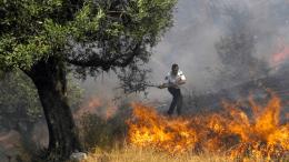 Οι δήμαρχοι των ελληνικών μειονοτικών δήμων εκτιμούν πως οι φωτιές είναι έργο εμπρηστών. Φωτογραφία: Πρώτο Θέμα.