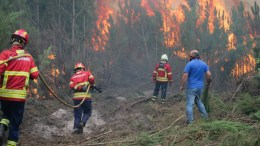 Fire fighters combat a forest fire in Gaeiras, Marinha Grande, Center of Portugal, 16 October 2017. Reports state that 6000 firemen supported by 1800 land vehicles are fighting several wildfires all over Portugal.  EPA/TIAGO PETINGA