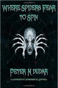 where-spiders-fear-to-spin