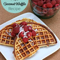 Back-To-Basics- Paleo Coconut Waffle Recipe + Win a No Mess Waffle Maker From Breville