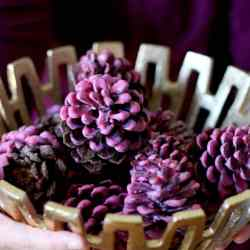 Make Your Own Wax-Dipped Cinnamon Pinecone Firestarters