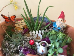 Small Of Miniature Garden Gnomes