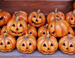 Halloween? No Thanks!